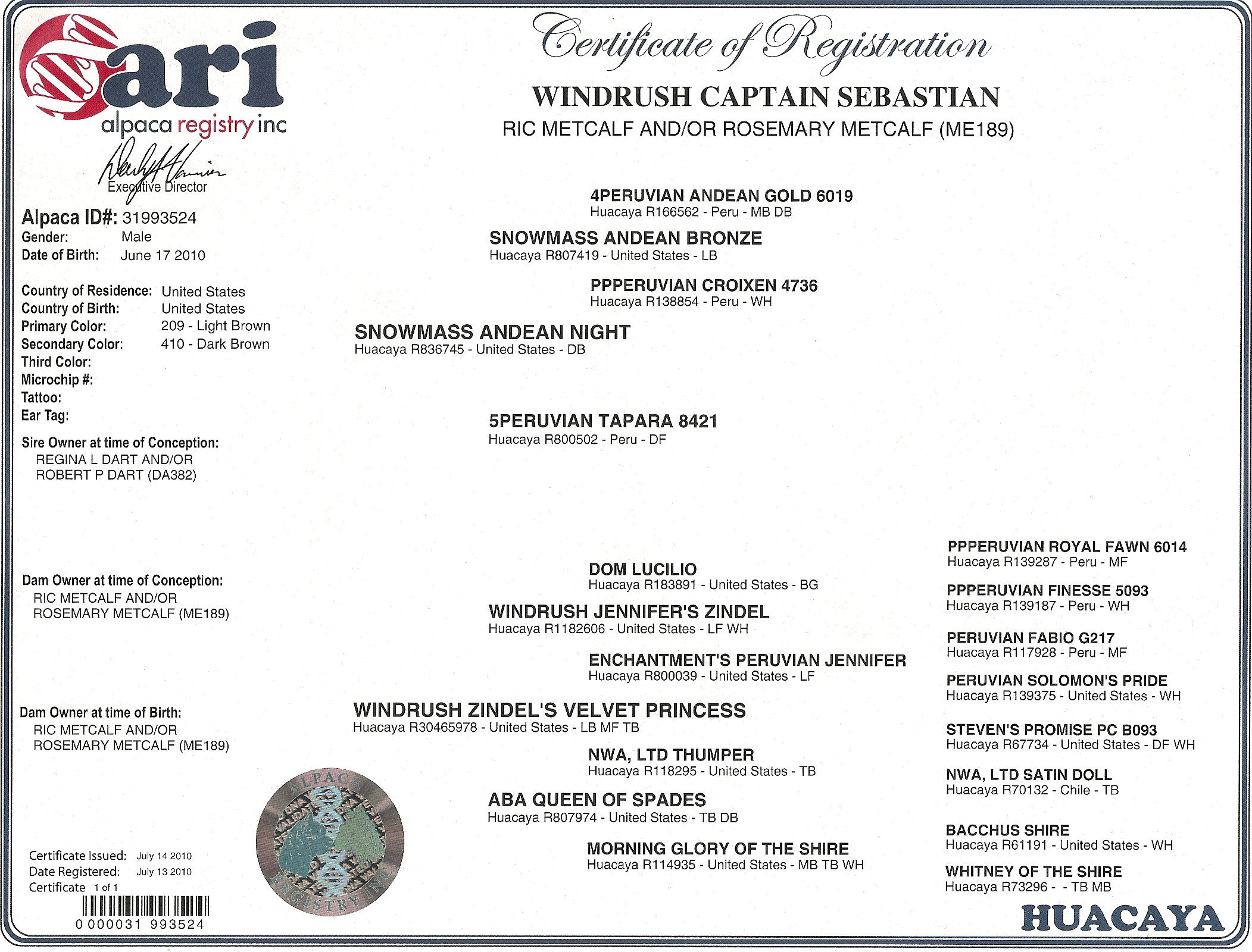 Alpacas for sale windrush captain sebastian huacaya male certificate 1betcityfo Images