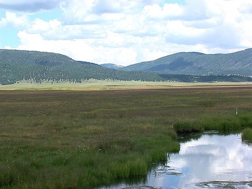 Valles Caldera where herds of elk roam free (and Hollywood makes movies!)
