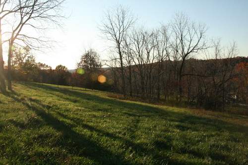 View of the Western Pasture
