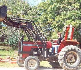 Kern on pasture duty