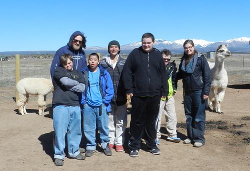 More kids meeting the alpacas!
