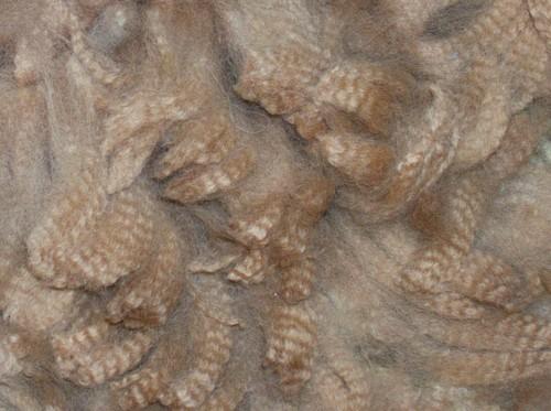 Huacaya fiber