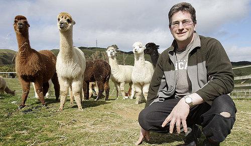 Wellington alpaca pack a punch