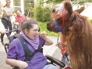 Rojo the therapy llama to be featured