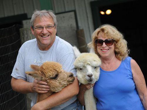 Gibraltar couple enjoys alpaca farming