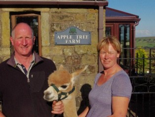 Alpaca it all in for a new life on the farm