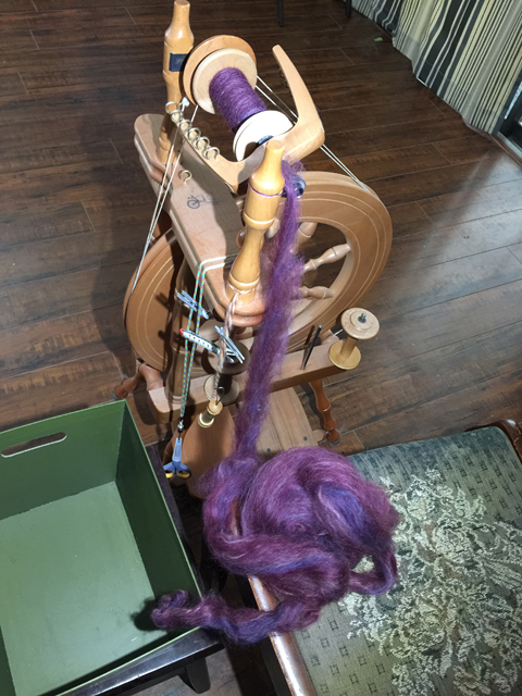 The fleece is processed into roving on a carder and then is spun into yarn on a spinning wheel.