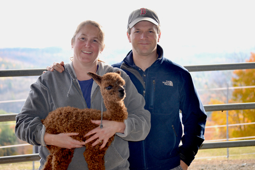 Alpaca: Coming To A Plate Near You