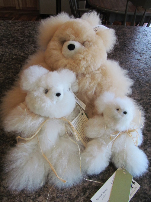 Alpaca teddy bears for sale at our farm store, so soft and cuddly!