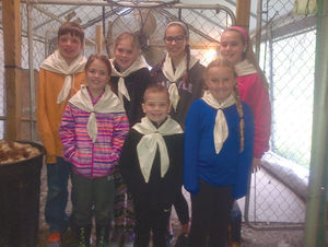 New 4-H Alpaca Club forms in Little Valley