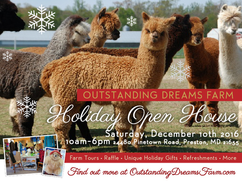 Outstanding Dreams Farm invites you to a unique holiday shopping experience at our annual Holiday Op