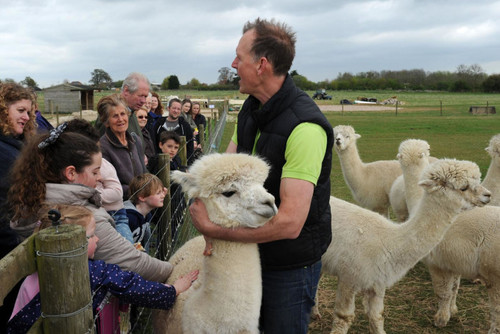 Easter open day fun at Abbotts View Alpacas