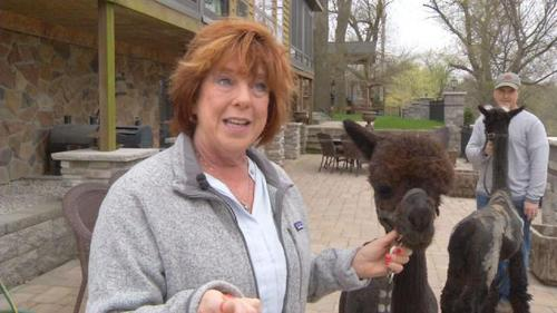 Made in Eastern Iowa: Finding Fiber From Alpaca