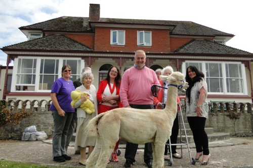 Barnstaple care home welcomes alpacas for special open day
