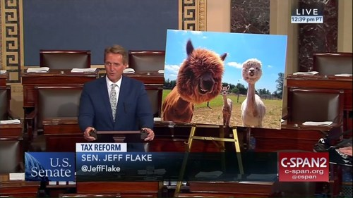 A Republican senator brought a giant alpaca picture to the floor — and it's even dumber than it soun