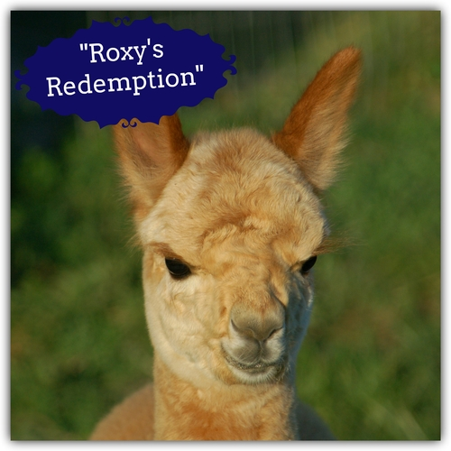 Roxy's Redemption (Girl)