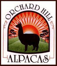 Orchard Hill Alpacas - Logo