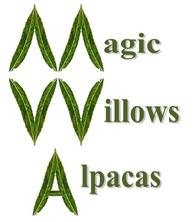 Magic Willows Alpacas - Logo