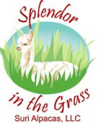 Splendor in the Grass Suri Alpacas, LLC - Logo