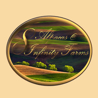 8Alpacas @ Infinity Farms - Logo
