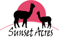 Alpacas at Sunset Acres - Logo