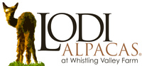 Lodi Alpacas at Whistling Valley Farm - Logo
