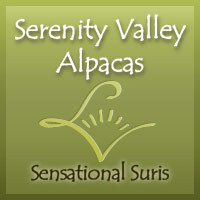 Serenity Valley Alpacas - Logo