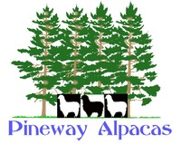 Pineway Alpacas - Logo