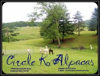 Circle K Alpacas - Logo