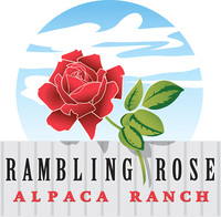 Rambling Rose Alpaca Ranch - Logo