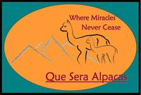 Que Sera Alpacas - Logo