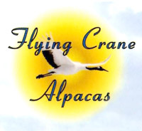 Flying Crane Alpacas - Logo