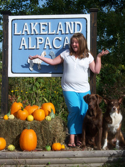 Welcome to Lakeland Alpacas