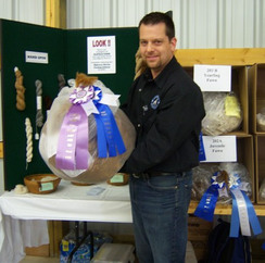 Miss Molly's Champion Fleece!  Shepherd's Harvest Sheep and Wool Festival