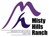 Misty Hills Ranch - Logo