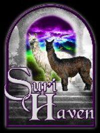 Suri Haven Alpaca Champions - Logo