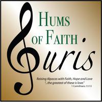 Hums of Faith Suris - Logo