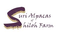 Suri Alpacas of Shiloh Farm - Logo
