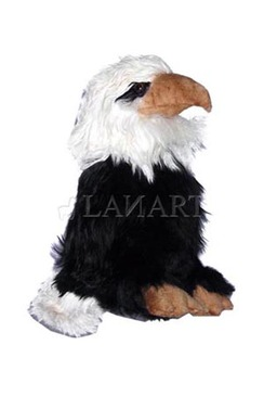 Photo of Suri Eagle Doll