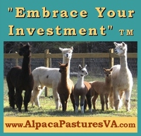 Alpaca Pastures of Virginia, Inc - Logo