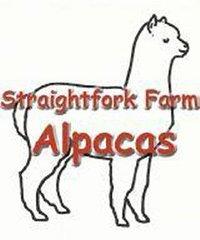 Straightfork Farm Alpacas - Logo