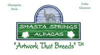 Shasta Springs Alpacas - Logo