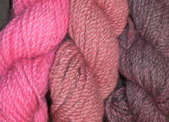 Photo of Alpacas from MaRS Pink Hand-dyed yarn