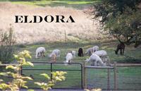 ELDORA Suri Alpacas - Logo