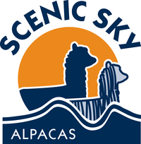 Scenic Sky L.L.C. - Logo