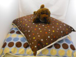 Photo of Pet Lounger - Small
