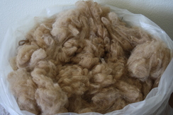 Photo of Beautiful raw alpaca fleece