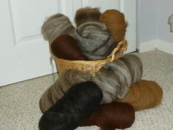 Photo of 100% alpaca rovings