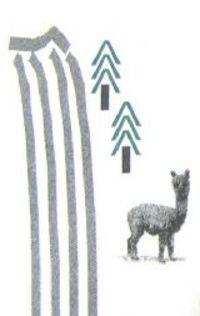 Silver Falls Alpacas - Logo
