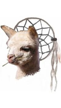 Dreamcatcher Alpacas, LLC - Logo